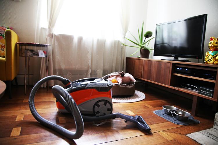Thomas, l'aspirateur AQUA & Pet Family + CONCOURS